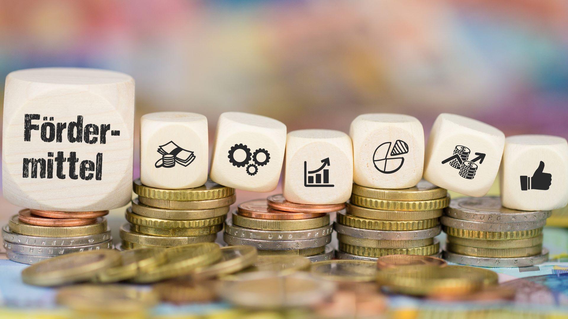 Finanzielle Förderung DMS-Projekte