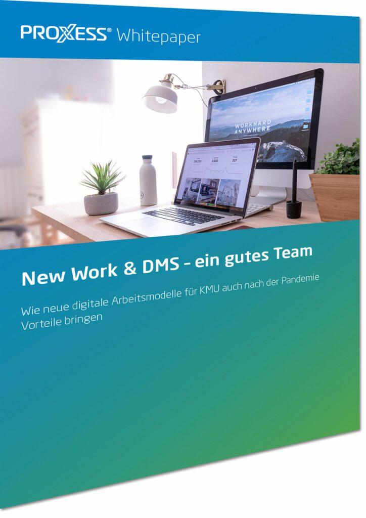 deckblatt proxess whitepaper new work dms ein gutes team
